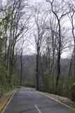 La mani?re en bas de la colline avec des arbres de chaque c?t? photos stock