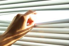 La mano abre la persiana. imagen de archivo libre de regalías