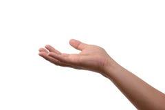 La mano alza qualcosa Immagini Stock Libere da Diritti