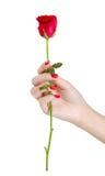 La mano atractiva de la mujer con sostenerse rojo de los clavos subió Imagen de archivo