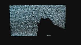 La mano commuta i canali nessun fondo di rumore TV dell'uomo Schermo della televisione con rumore statico causato dalla cattiva r video d archivio