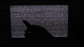 La mano commuta lo stile di vita dei canali nessun fondo di rumore TV dell'uomo Schermo della televisione con rumore statico caus video d archivio