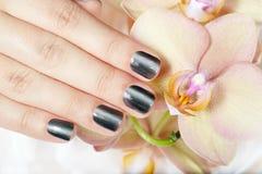 La mano con gris manicured clavos y las flores de la orquídea Fotografía de archivo