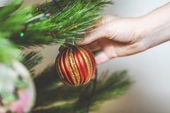 La mano cuelga en bola roja hermosa del árbol de navidad Imagen de archivo libre de regalías