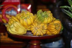 La mano de Buda, sarcodactylis de las variedades del medica de la fruta cítrica es una variedad cítrica fragante cuya fruta se di Foto de archivo libre de regalías