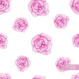 La mano de la acuarela dibujada y pintó el modelo color de rosa inconsútil Foto de archivo