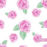 La mano de la acuarela dibujada y pintó el modelo color de rosa inconsútil Imagenes de archivo
