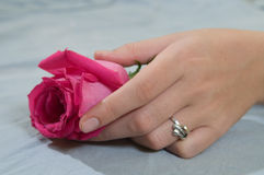 La mano de la muchacha en color de rosa se levantó Foto de archivo libre de regalías