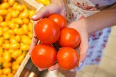 La mano de la muchacha que sostiene los tomates Foto de archivo