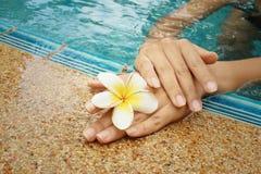La mano de la mujer con la flor del plumeria en la piscina Foto de archivo