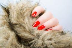 La mano de la mujer con los clavos largos rojos Fotos de archivo libres de regalías