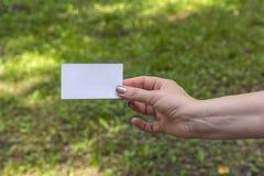 La mano de las mujeres con la tarjeta Fotografía de archivo libre de regalías