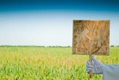La mano de un camarero en un guante del blanco lleva a cabo una muestra de madera Imagenes de archivo