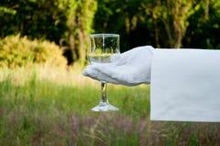 La mano de un camarero en un guante del blanco sostiene un vidrio en la naturaleza Imagen de archivo