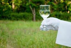 La mano de un camarero en un guante del blanco sostiene un vidrio en la naturaleza Imagen de archivo libre de regalías