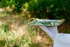 La mano de un camarero en un guante del blanco sostiene una bandeja del metal en el aire abierto fotos de archivo