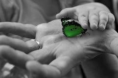 La mano del bambino accarezza una farfalla sulla mano dell'uomo Immagine Stock