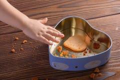 La mano del bambino che raggiunge per l'ultimo biscotto dello zenzero nel cuore ha modellato la scatola fotografia stock