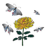 La mano del crisantemo y de la mariposa dibujada bosquejó el ejemplo Imagen de archivo