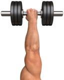 La mano del hombre fuerte con una pesa de gimnasia Imagenes de archivo