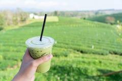 La mano del hombre joven que sostiene un vidrio de la bebida del té verde archivada con un té verde de té del fondo grande de la  imagen de archivo libre de regalías