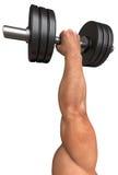 La mano del hombre lleva a cabo una pesa de gimnasia fotografía de archivo