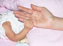 La mano del niño con dulzura Imagen de archivo libre de regalías