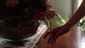 La mano del ` s de la mujer toca el ramo de flores secadas en florero almacen de video