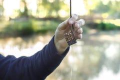 La mano del ` s del pescatore tiene una scatola del groundbait con un'esca Immagini Stock Libere da Diritti