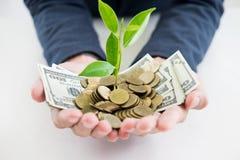 La mano dell'uomo di affari compone la palma con crescere le monete dei soldi e la s fotografia stock libera da diritti