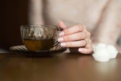 La mano della bella donna con una tazza di tè Fotografia Stock Libera da Diritti