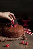 La mano della donna che mette una mora su un dolce di cioccolato Immagini Stock