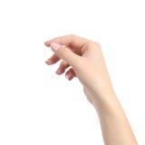 La mano della donna che tiene alcuno gradisce una carta in bianco