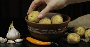La mano della donna prende le patate in mucchio uno per uno Patate crude sporche su un piatto immagini stock
