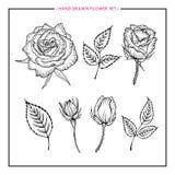 La mano determinada de la flor dibujada subió Imagenes de archivo