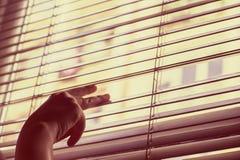 La mano di Woman's apre i ciechi e guarda attraverso la finestra fotografia stock libera da diritti