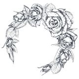 La mano dibujada subió guirnalda de las flores aislada en el fondo blanco imagen de archivo libre de regalías