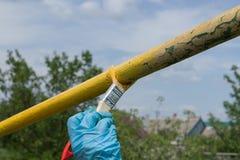 La mano en guante mantiene el cepillo mojado la pintura amarilla impresa en curso de tubos de pintura del metal foto de archivo