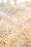 La mano en hierba seca con relaja la sensación Imagen de archivo libre de regalías