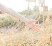 La mano en hierba seca con relaja la sensación Fotografía de archivo libre de regalías