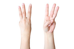 La mano fa il segno tre Immagine Stock