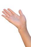 La mano femenina está recibiendo o está dando Foto de archivo libre de regalías