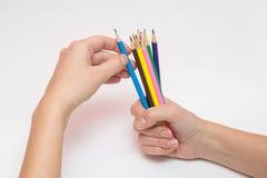 La mano femenina que sostiene un puño alrededor de docena lápices, la otra mano selecciona el color deseado Imagen de archivo libre de regalías