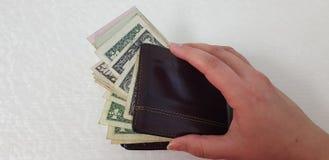 La mano femminile isolata su fondo bianco apre il portafoglio di cuoio marrone immagine stock