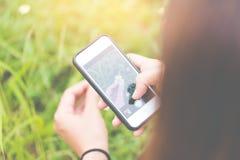 La mano femminile prende le immagini dei fiori gialli con lo Smart Phone mobile Sui precedenti dei fiori gialli e dell'erba verde Immagine Stock Libera da Diritti