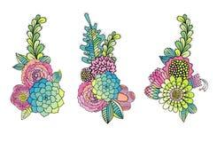 La mano floral dibujada fijó suculento, color de rosa, hoja libre illustration