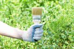 La mano gloved di un uomo tiene un'ampia spazzola per la verniciatura su un fondo verde fotografia stock