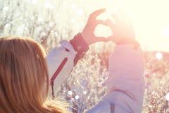 La mano ha modellato il cuore contro il fondo del cielo fotografia stock libera da diritti