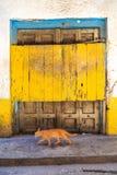 La mano hizo los posts de madera de la puerta a mano en Zanzíbar imágenes de archivo libres de regalías