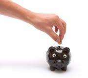 La mano lanza la moneda en rectángulo de dinero guarro Imagen de archivo libre de regalías